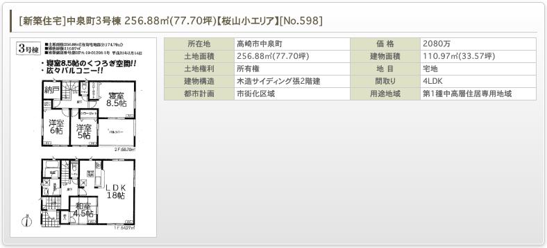 [新築住宅]中泉町3号棟 256.88㎡(77.70坪)【桜山小エリア】 [No.598]